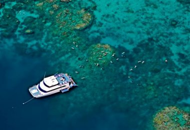 Great Barrier Reef Reef Experience Cairns Australia Day Tour Sno